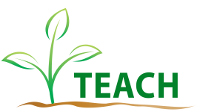 Image result for teach